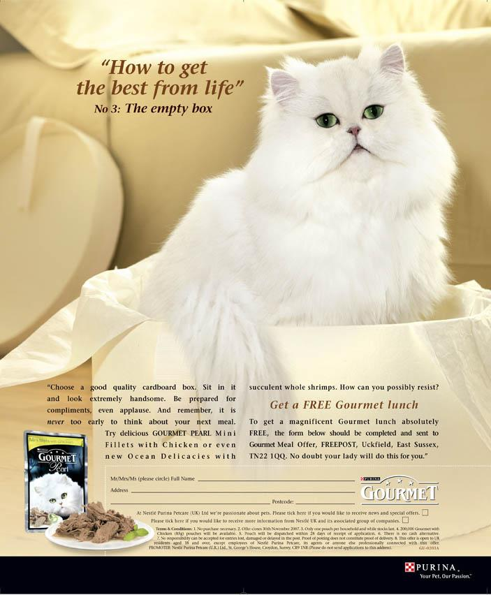 "Purina Cat Advertisement ""The Empty Box"""